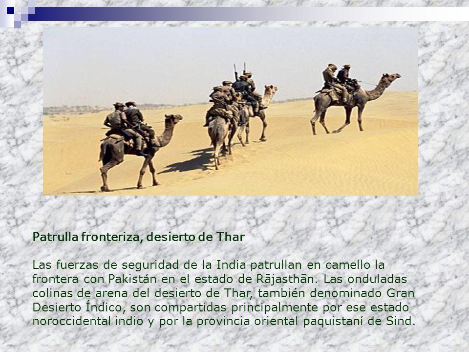 Patrulla fronteriza, desierto de Thar Las fuerzas de seguridad de la India patrullan en camello la frontera con Pakistán en el estado de Rājasthān. La