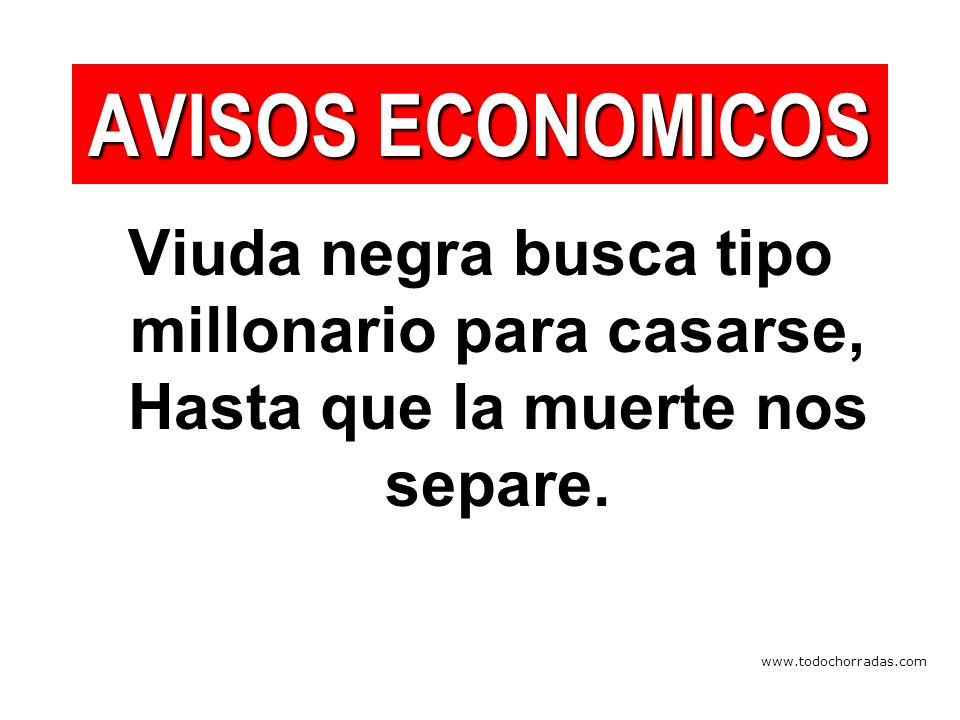 www.todochorradas.com Viuda negra busca tipo millonario para casarse, Hasta que la muerte nos separe.
