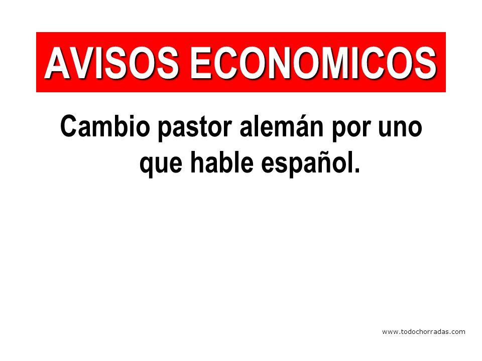 www.todochorradas.com Cambio pastor alemán por uno que hable español. AVISOS ECONOMICOS