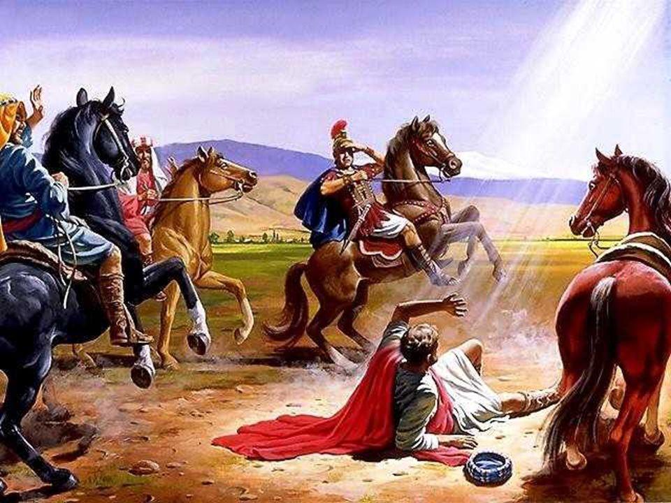 + La Bíblia nos habla de su vocación y de su actividad : SAN PEDRO, la roca firme, conoce a Cristo en la orilla del lago, lo sigue desde el comienzo d
