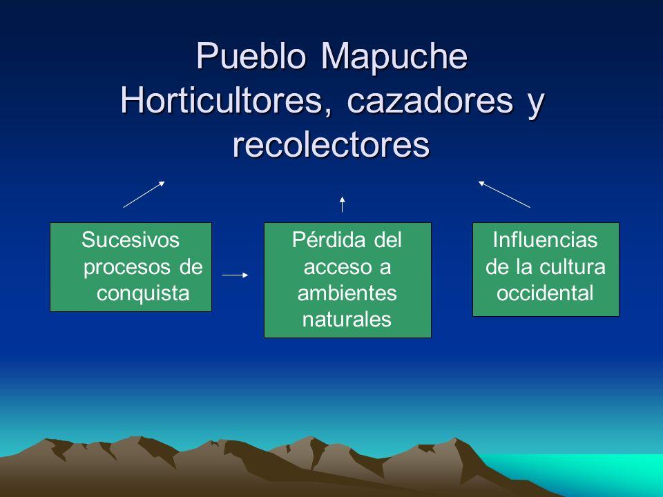 PRESENTE Modificación de patrones de uso de ambientes ecológicos Pérdida de diversidad cultural Modificación del modelo de producción agrícola y práctica de recolección EROSIÓN DEL CONOCIMIENTO TRADICIONAL