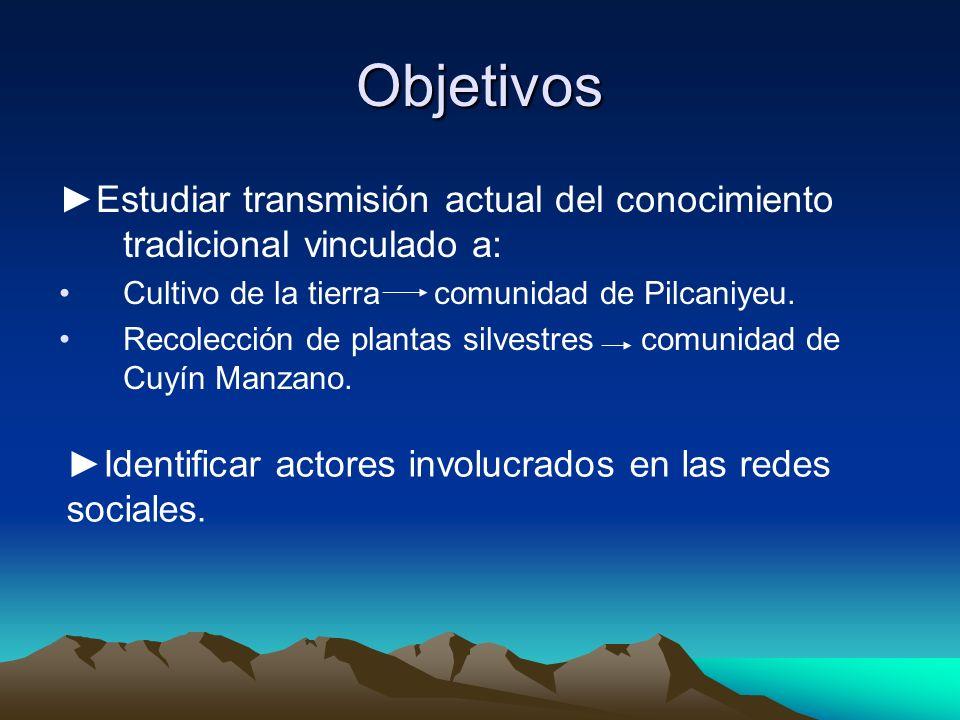 Discusión Cultivo de la tierra Reemplazo de cultivos desde la conquista española.