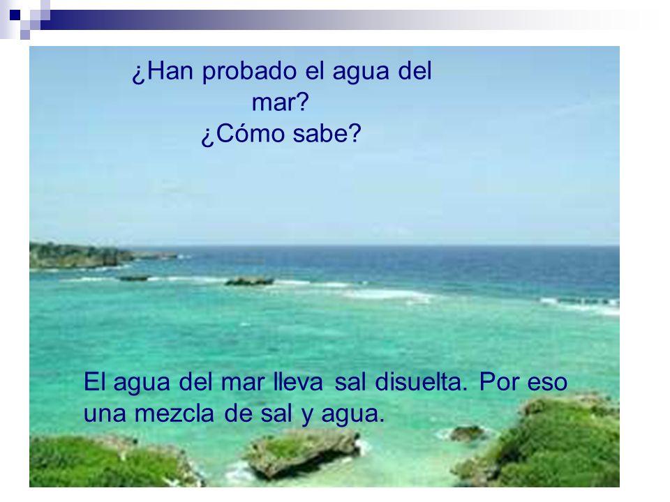 ¿Han probado el agua del mar.¿Cómo sabe. El agua del mar lleva sal disuelta.