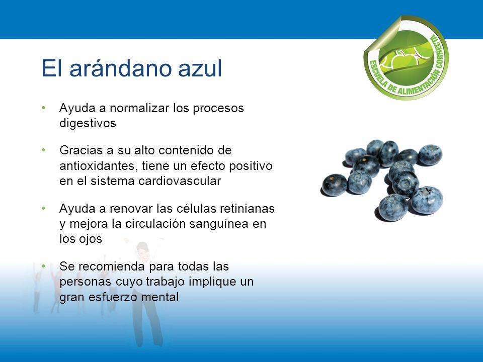 El arándano azul Ayuda a normalizar los procesos digestivos Gracias a su alto contenido de antioxidantes, tiene un efecto positivo en el sistema cardi