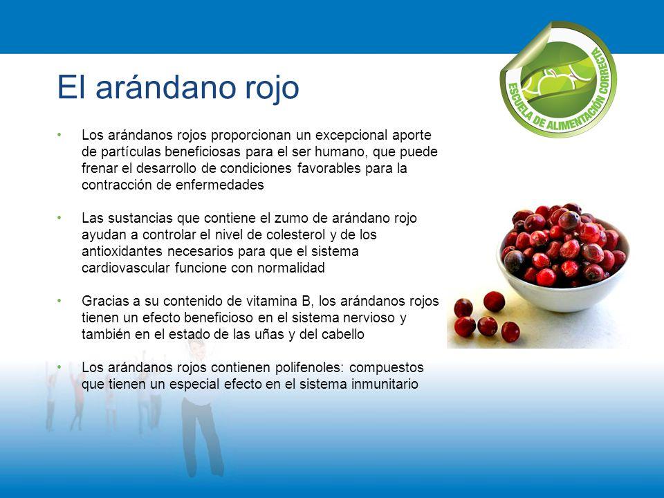 El arándano rojo Los arándanos rojos proporcionan un excepcional aporte de partículas beneficiosas para el ser humano, que puede frenar el desarrollo