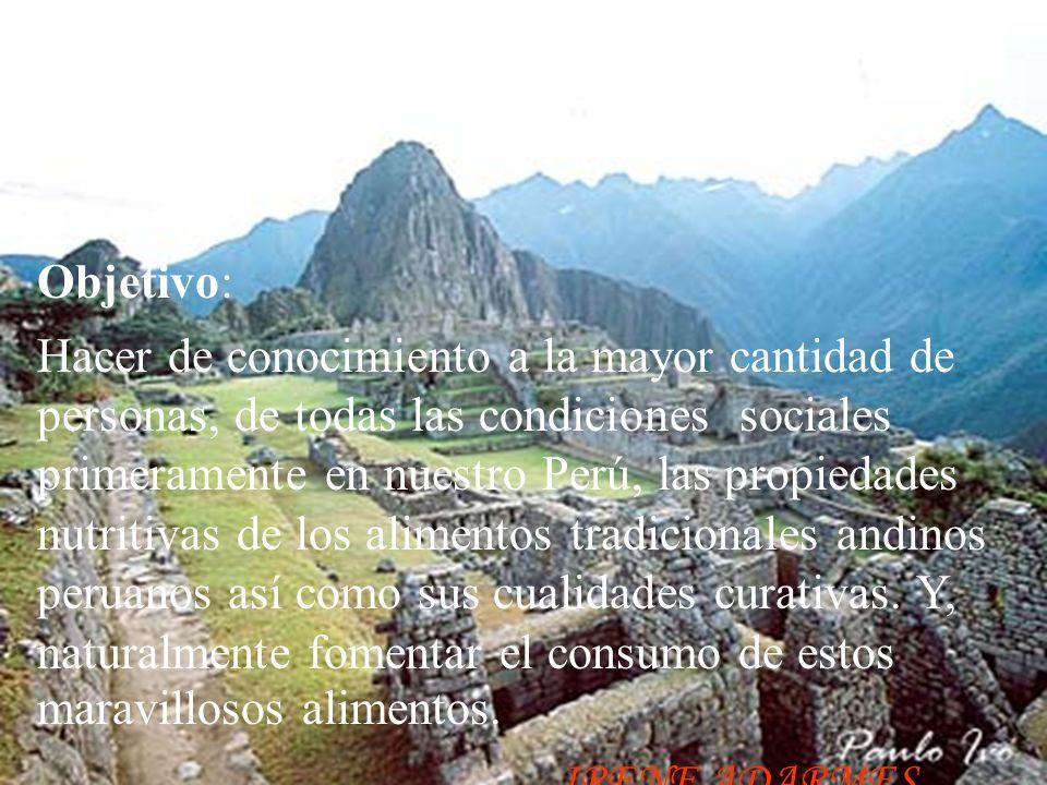 Objetivo: Hacer de conocimiento a la mayor cantidad de personas, de todas las condiciones sociales primeramente en nuestro Perú, las propiedades nutritivas de los alimentos tradicionales andinos peruanos así como sus cualidades curativas.