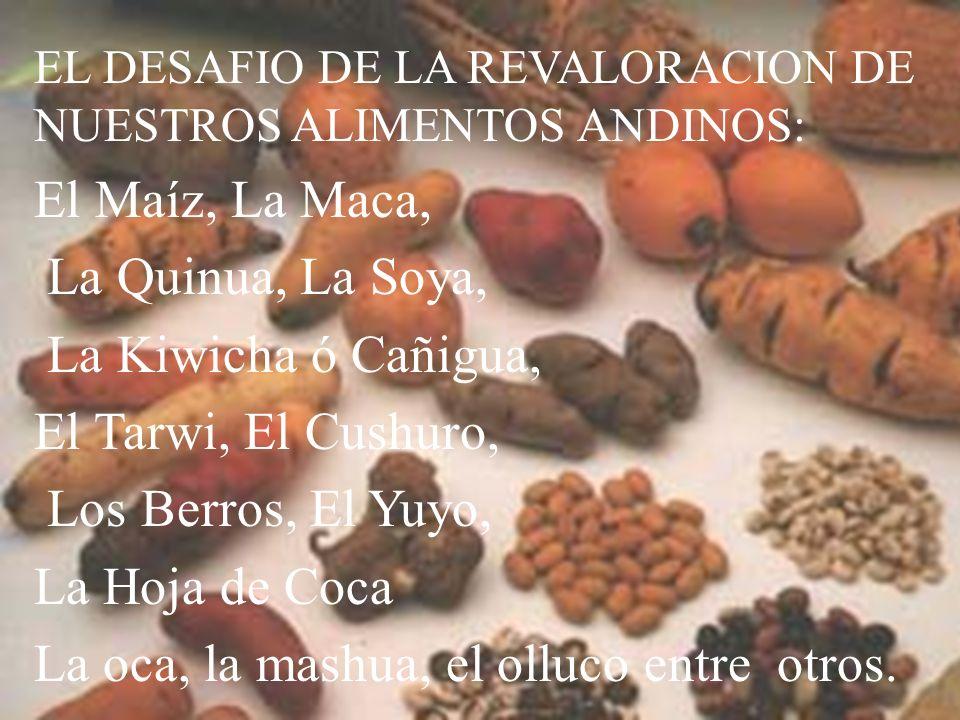SOMOS HEREDEROS DE UNA GRAN CULTURA A propósito de la excelencia de nuestros alimentos,, las costumbres, la vestimenta, el idioma, los apellidos andin