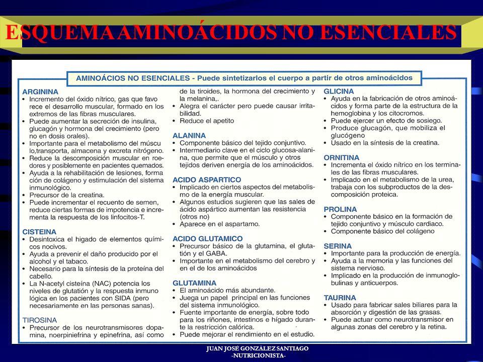 JUAN JOSÉ GONZÁLEZ SANTIAGO -NUTRICIONISTA- ESQUEMA AMINOÁCIDOS ESENCIALES