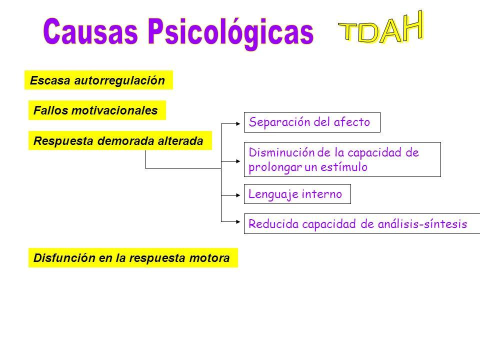 NEUROQUÍMICA DEL TDAH ALTERACIONES EN LA MODULACIÓN DE LA SEROTONINA CON OTROS NEUROTRANSMISORES CAUSAS GENÉTICAS DEL TDAH Niños con un cromosoma Y ex