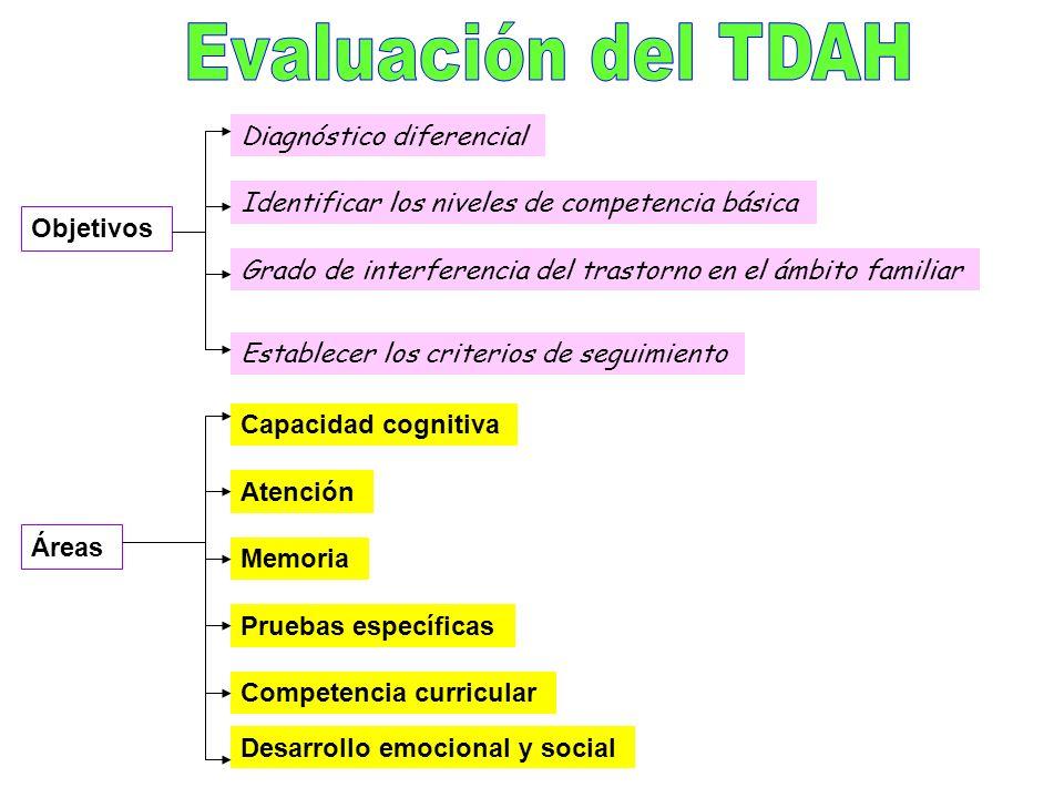 Inhibición, la autorregulación, la supervisión, la vigilancia, la atención selectiva y sostenida, el mantenimiento de juego de respuesta, planificació