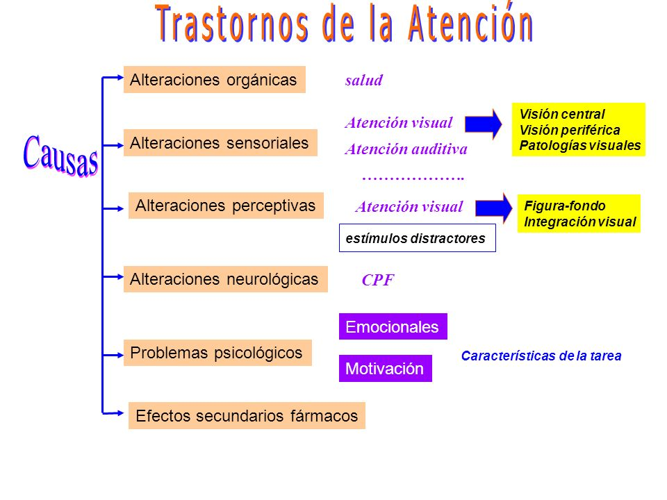 Modalidades sensoriales de la atención En función de la percepción sensorial: Atención visual Atención auditiva Atención táctil Atención olfativa y gu