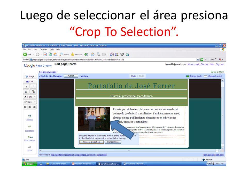 Luego de seleccionar el área presiona Crop To Selection.