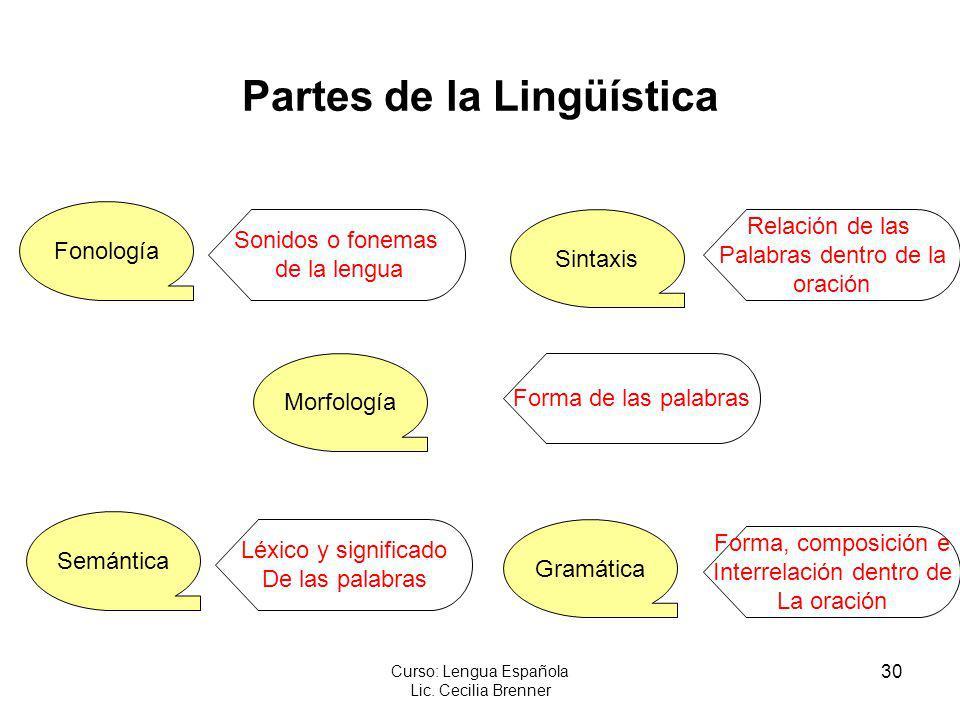 30 Curso: Lengua Española Lic. Cecilia Brenner Partes de la Lingüística Fonología Morfología Semántica Sintaxis Gramática Sonidos o fonemas de la leng
