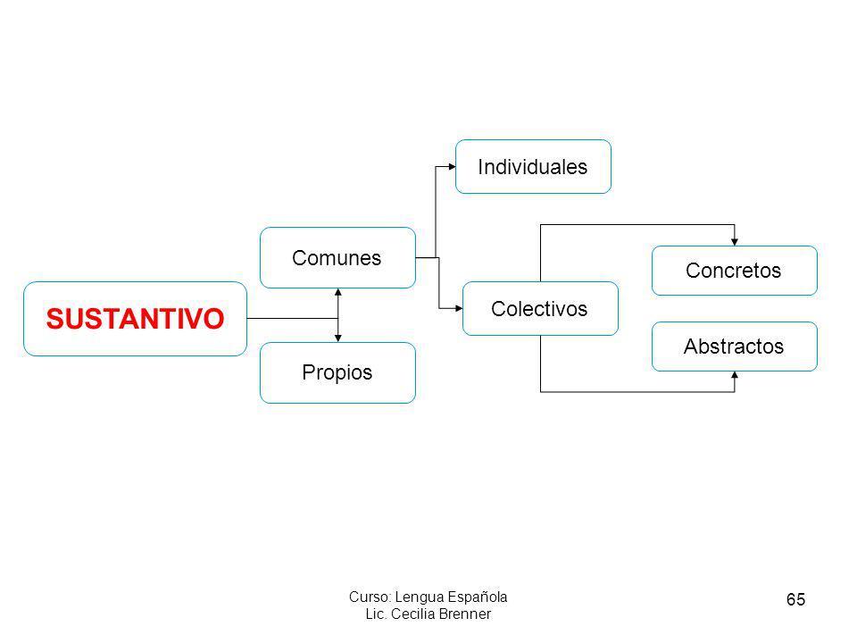 65 Curso: Lengua Española Lic. Cecilia Brenner SUSTANTIVO Propios Concretos Colectivos Individuales Comunes Abstractos