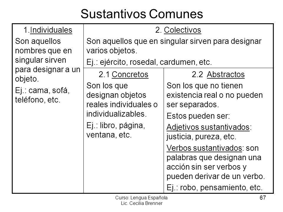 67 Curso: Lengua Española Lic. Cecilia Brenner Sustantivos Comunes 1.Individuales Son aquellos nombres que en singular sirven para designar a un objet
