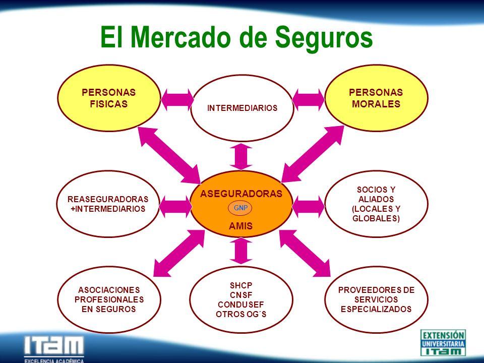 Seguro Personas El Mercado de Seguros REASEGURADORAS +INTERMEDIARIOS ASEGURADORAS AMIS INTERMEDIARIOS PERSONAS FISICAS PERSONAS MORALES SHCP CNSF COND