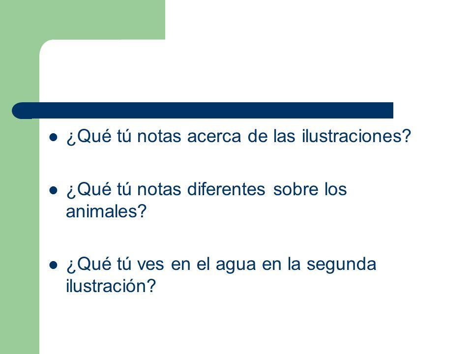 ¿Qué tú notas acerca de las ilustraciones.¿Qué tú notas diferentes sobre los animales.