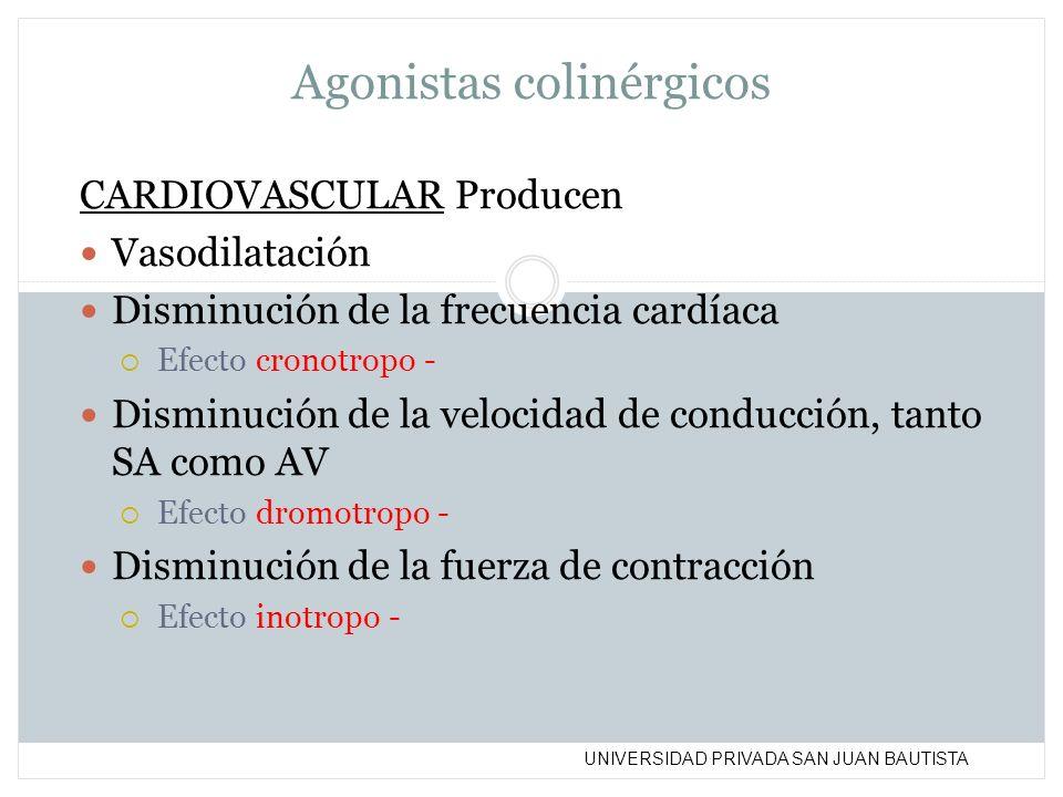 UNIVERSIDAD PRIVADA SAN JUAN BAUTISTA Agonistas colinérgicos CARDIOVASCULAR Producen Vasodilatación Disminución de la frecuencia cardíaca Efecto crono