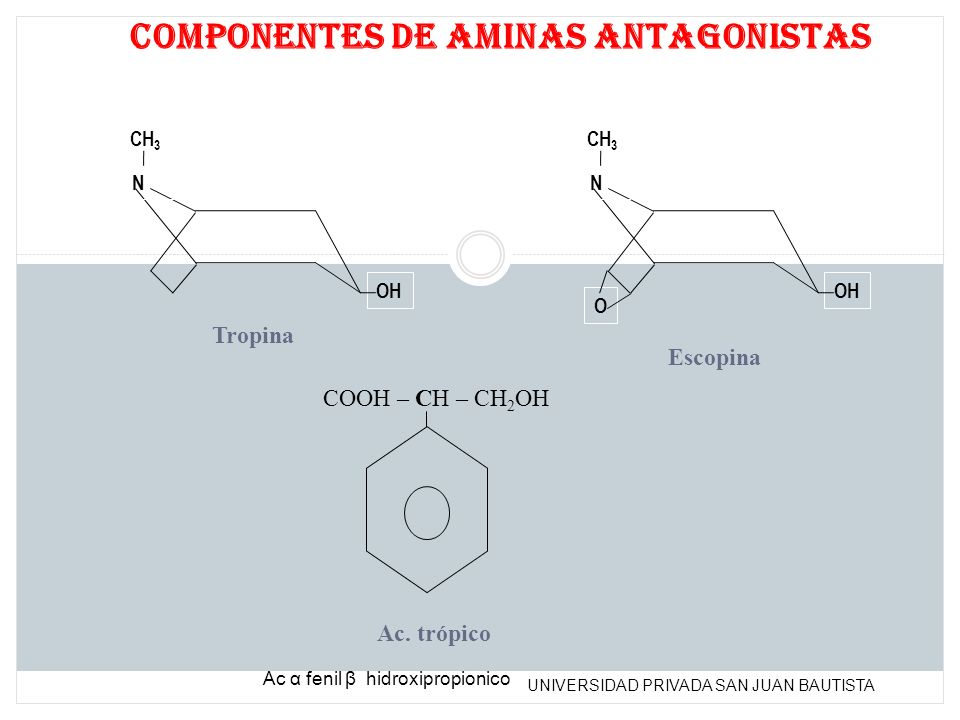 UNIVERSIDAD PRIVADA SAN JUAN BAUTISTA N CH 3 OH N CH 3 OH O COOH – CH – CH 2 OH Componentes de aminas antagonistas Tropina Escopina Ac. trópico Ac α f