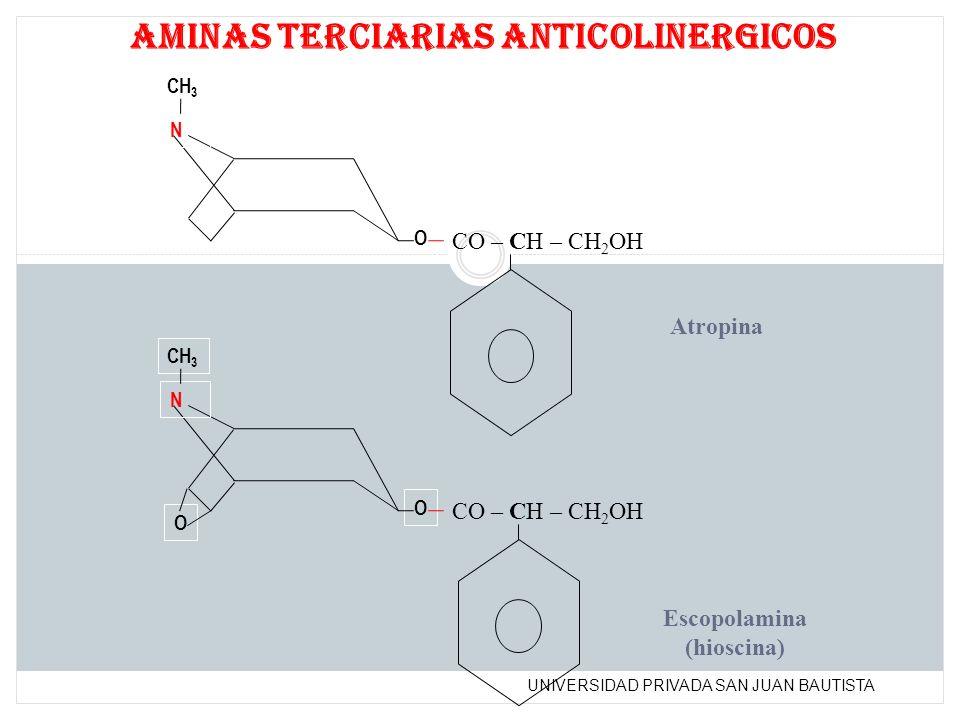 UNIVERSIDAD PRIVADA SAN JUAN BAUTISTA N CH 3 O N O O CO – CH – CH 2 OH aminas terciarias anticolinergicos Atropina CO – CH – CH 2 OH Escopolamina (hio