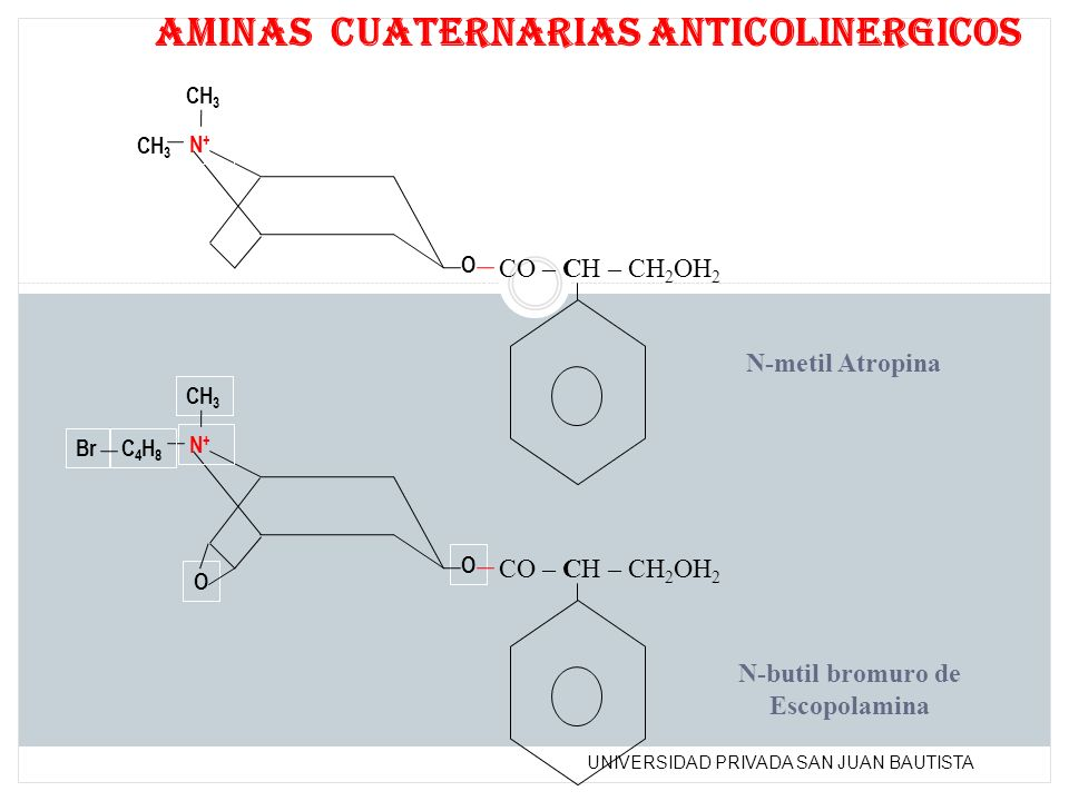 UNIVERSIDAD PRIVADA SAN JUAN BAUTISTA N+N+ CH 3 O N+N+ O O CO – CH – CH 2 OH 2 aminas cuaternarias anticolinergicos N-metil Atropina N-butil bromuro d