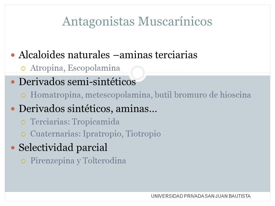 UNIVERSIDAD PRIVADA SAN JUAN BAUTISTA Antagonistas Muscarínicos Alcaloides naturales –aminas terciarias Atropina, Escopolamina Derivados semi-sintétic