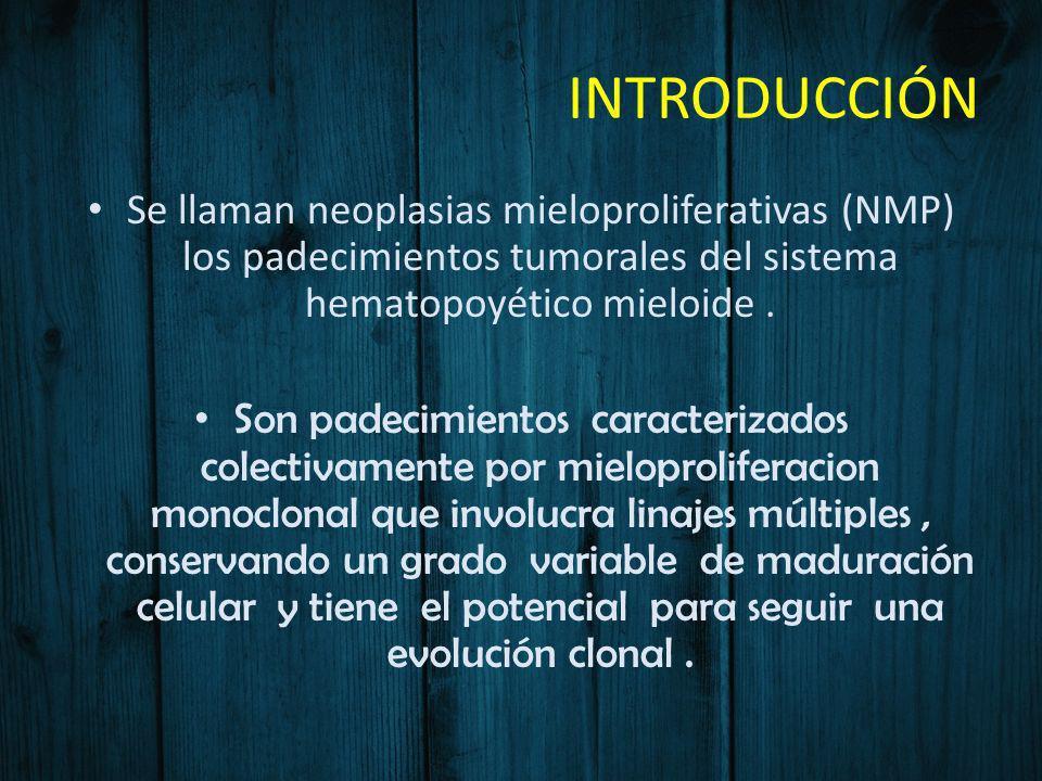 INTRODUCCIÓN Se llaman neoplasias mieloproliferativas (NMP) los padecimientos tumorales del sistema hematopoyético mieloide. Son padecimientos caracte