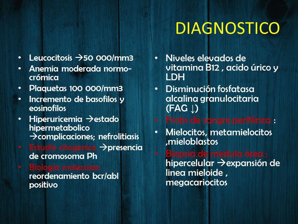 DIAGNOSTICO Leucocitosis 50 000/mm3 Anemia moderada normo- crómica Plaquetas 100 000/mm3 Incremento de basofilos y eosinofilos Hiperuricemia estado hi