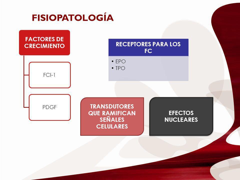 FACTORES DE CRECIMIENTO FCI-1PDGF FISIOPATOLOGÍA RECEPTORES PARA LOS FC EPO TPO TRANSDUTORES QUE RAMIFICAN SEÑALES CELULARES EFECTOS NUCLEARES