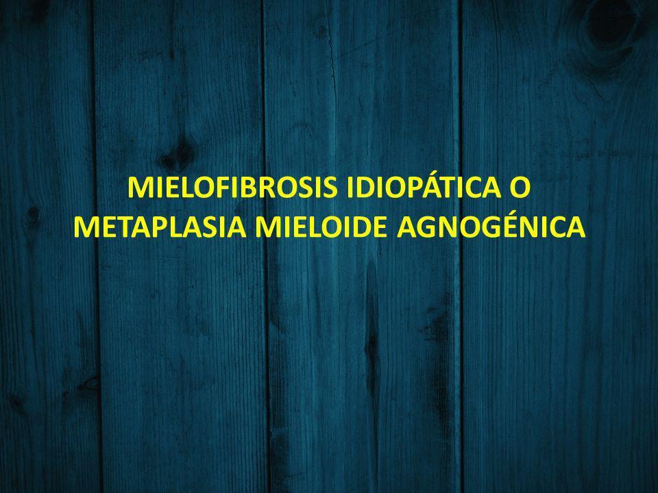 MIELOFIBROSIS IDIOPÁTICA O METAPLASIA MIELOIDE AGNOGÉNICA
