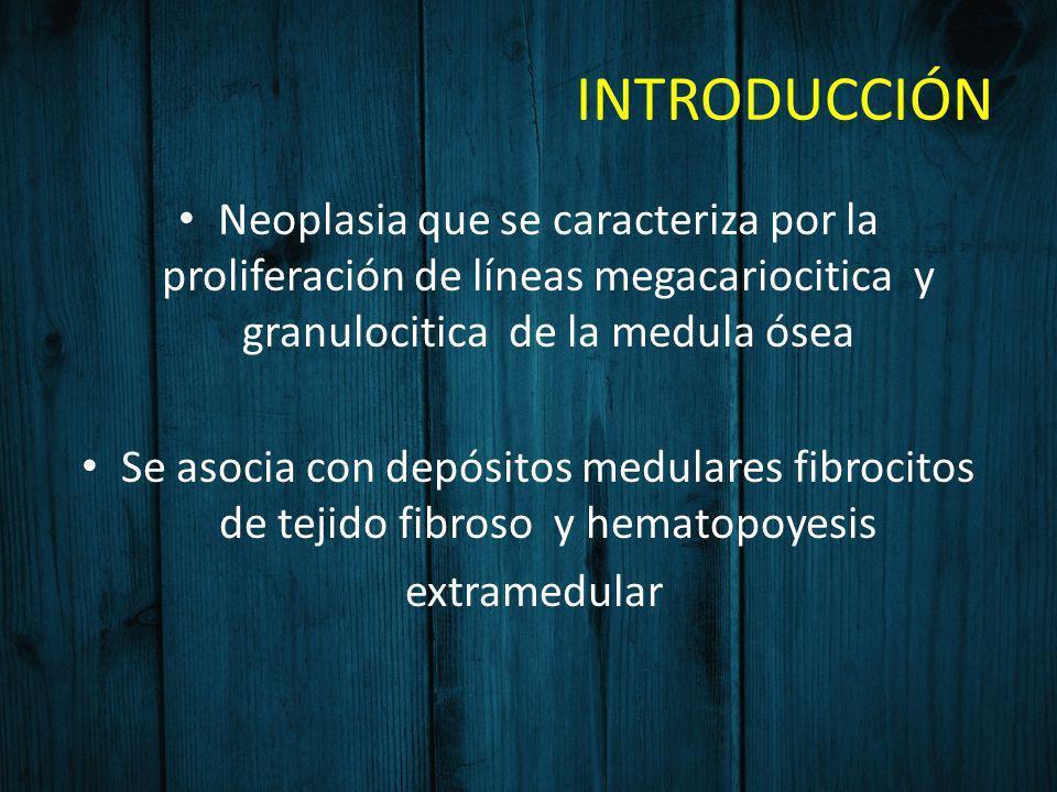 INTRODUCCIÓN Neoplasia que se caracteriza por la proliferación de líneas megacariocitica y granulocitica de la medula ósea Se asocia con depósitos med