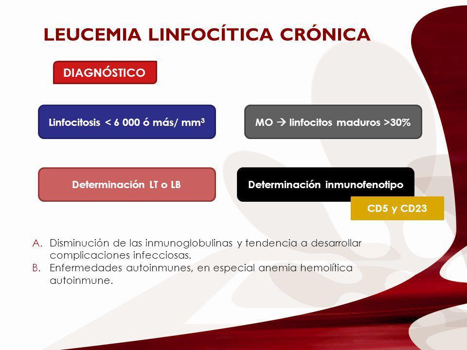LEUCEMIA LINFOCÍTICA CRÓNICA DIAGNÓSTICO Linfocitosis < 6 000 ó más/ mm 3 MO linfocitos maduros >30% Determinación LT o LB Determinación inmunofenotip