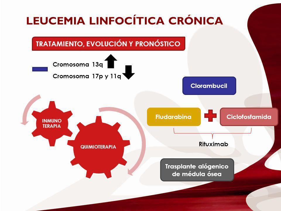 LEUCEMIA LINFOCÍTICA CRÓNICA TRATAMIENTO, EVOLUCIÓN Y PRONÓSTICO Cromosoma 13q Cromosoma 17p y 11q QUIMIOTERAPIA INMUNO TERAPIA Clorambucil Fludarabin