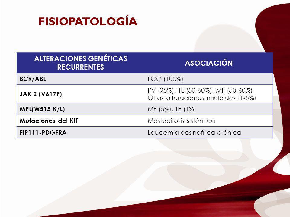 ALTERACIONES GENÉTICAS RECURRENTES ASOCIACIÓN BCR/ABL LGC (100%) JAK 2 (V617F) PV (95%), TE (50-60%), MF (50-60%) Otras alteraciones mieloides (1-5%)