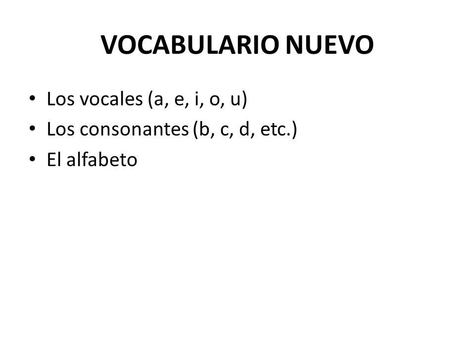 VOCABULARIO NUEVO Los vocales (a, e, i, o, u) Los consonantes (b, c, d, etc.) El alfabeto