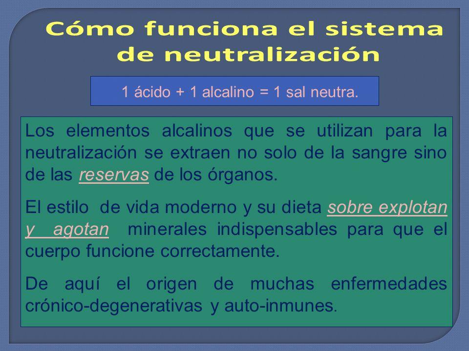 Los elementos alcalinos que se utilizan para la neutralización se extraen no solo de la sangre sino de las reservas de los órganos. El estilo de vida