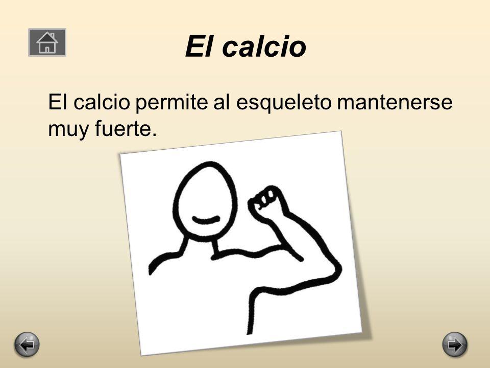 Calcio y vitamina D El calcio y la vitamina D son súper importantes para tu cuerpo ya que te mantienen en perfecto estado.