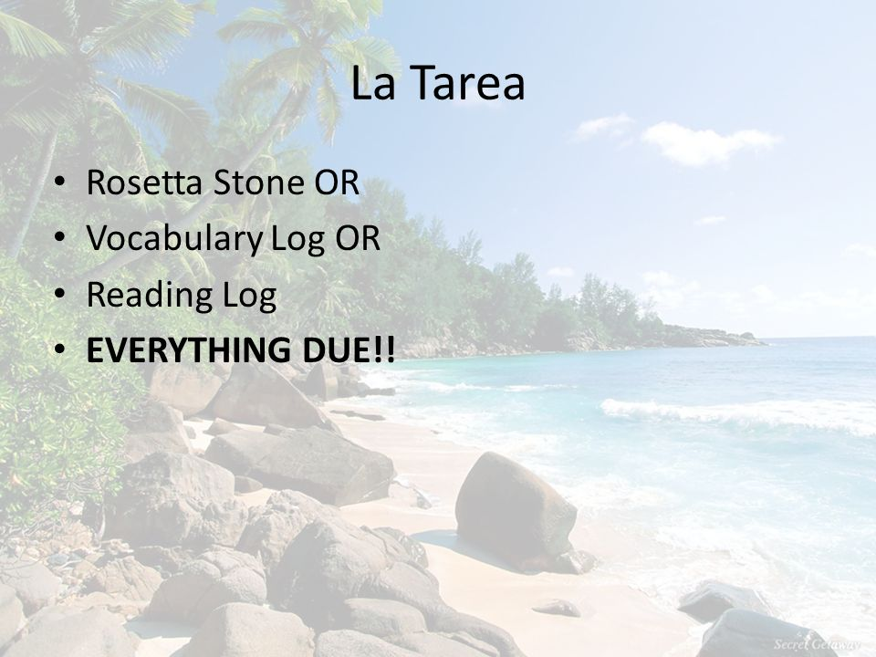 La Tarea Rosetta Stone OR Vocabulary Log OR Reading Log EVERYTHING DUE!!