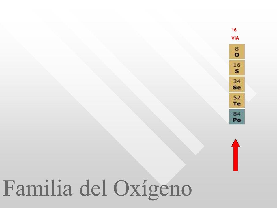 Familia del Oxígeno 16VIA