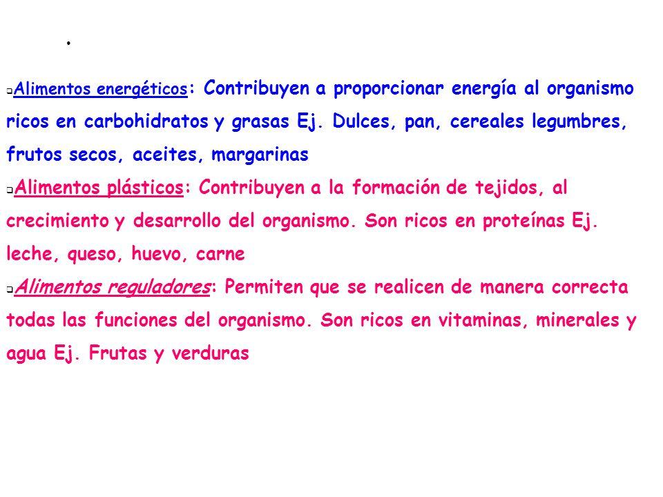 Funciones primordiales de los alimentos Alimentos energéticos : Contribuyen a proporcionar energía al organismo ricos en carbohidratos y grasas Ej. Du