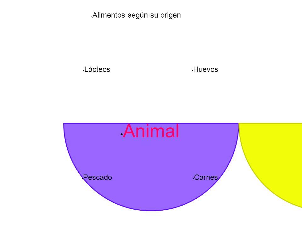 Alimentos según su origen Lácteos Pescado Carnes Huevos Animal