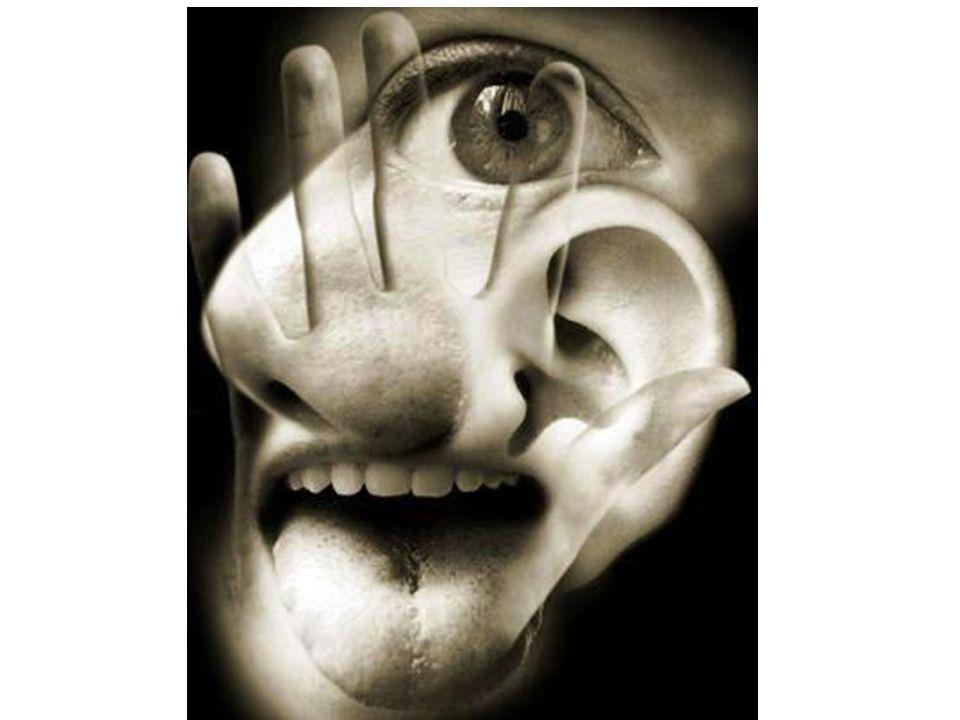 7.-¿Cuántos sentidos tenemos?