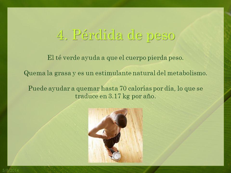 4.Pérdida de peso 5/8/2014 El té verde ayuda a que el cuerpo pierda peso.