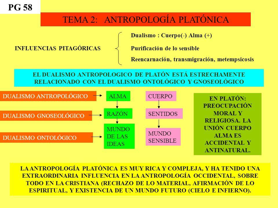 TEMA 2: ANTROPOLOGÍA PLATÓNICA INFLUENCIAS PITAGÓRICAS Dualismo : Cuerpo(-) Alma (+) Purificación de lo sensible Reencarnación, transmigración, metempsicosis EL DUALISMO ANTROPOLOGICO DE PLATÓN ESTÁ ESTRECHAMENTE RELACIONADO CON EL DUALISMO ONTOLÓGICO Y GNOSEOLÓGICO ALMA RAZÓN MUNDO DE LAS IDEAS CUERPO SENTIDOS MUNDO SENSIBLE DUALISMO ANTROPOLÓGICO DUALISMO GNOSEOLÓGICO DUALISMO ONTOLÓGICO LA ANTROPOLOGÍA PLATÓNICA ES MUY RICA Y COMPLEJA, Y HA TENIDO UNA EXTRAORDINARIA INFLUENCIA EN LA ANTROPOLOGÍA OCCIDENTAL, SOBRE TODO EN LA CRISTIANA (RECHAZO DE LO MATERIAL, AFIRMACIÓN DE LO ESPIRITUAL, Y EXISTENCIA DE UN MUNDO FUTURO (CIELO E INFIERNO).