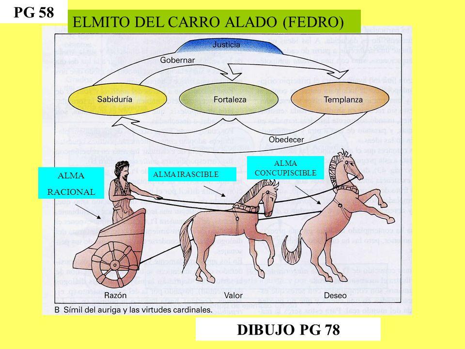 ELMITO DEL CARRO ALADO (FEDRO) ALMA RACIONAL ALMA IRASCIBLE ALMA CONCUPISCIBLE PG 58 DIBUJO PG 78