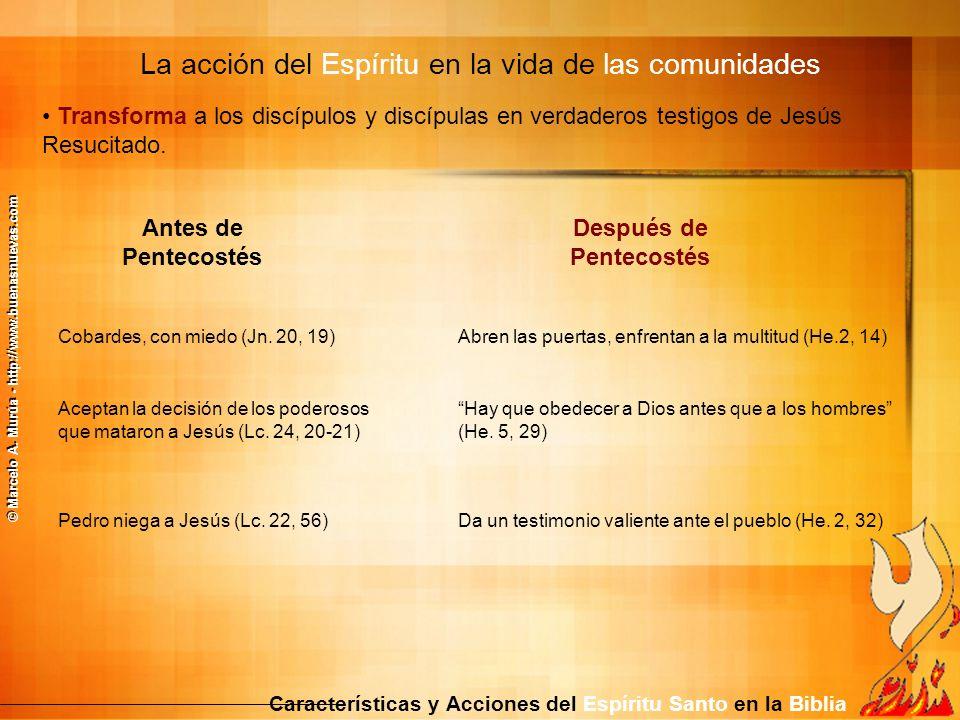 Transforma a los discípulos y discípulas en verdaderos testigos de Jesús Resucitado. La acción del Espíritu en la vida de las comunidades Característi