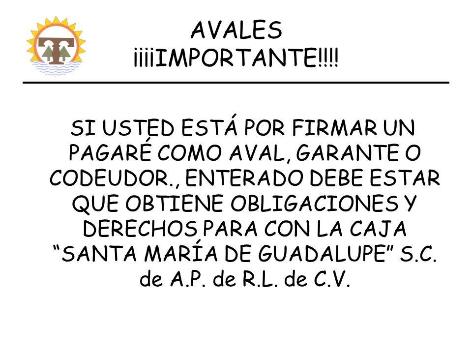 AVALES ¡¡¡¡IMPORTANTE!!!.