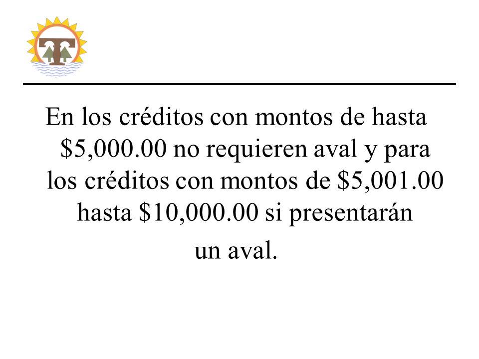 En los créditos con montos de hasta $5,000.00 no requieren aval y para los créditos con montos de $5,001.00 hasta $10,000.00 si presentarán un aval.