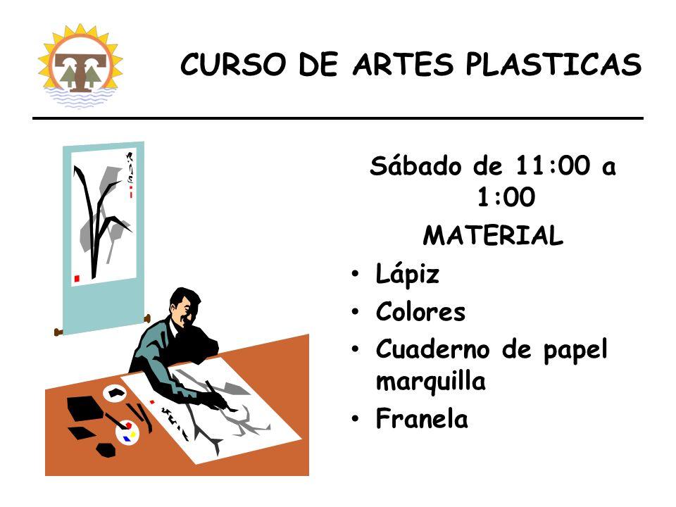 CURSO DE ARTES PLASTICAS Sábado de 11:00 a 1:00 MATERIAL Lápiz Colores Cuaderno de papel marquilla Franela