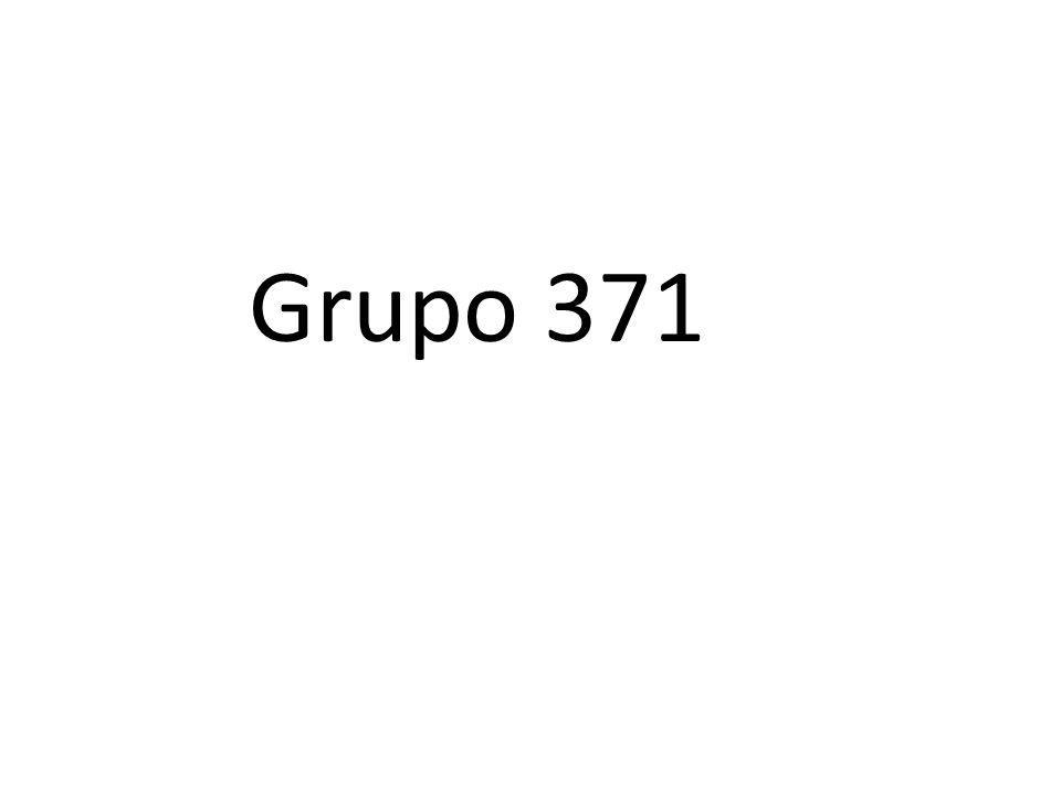 Grupo 371